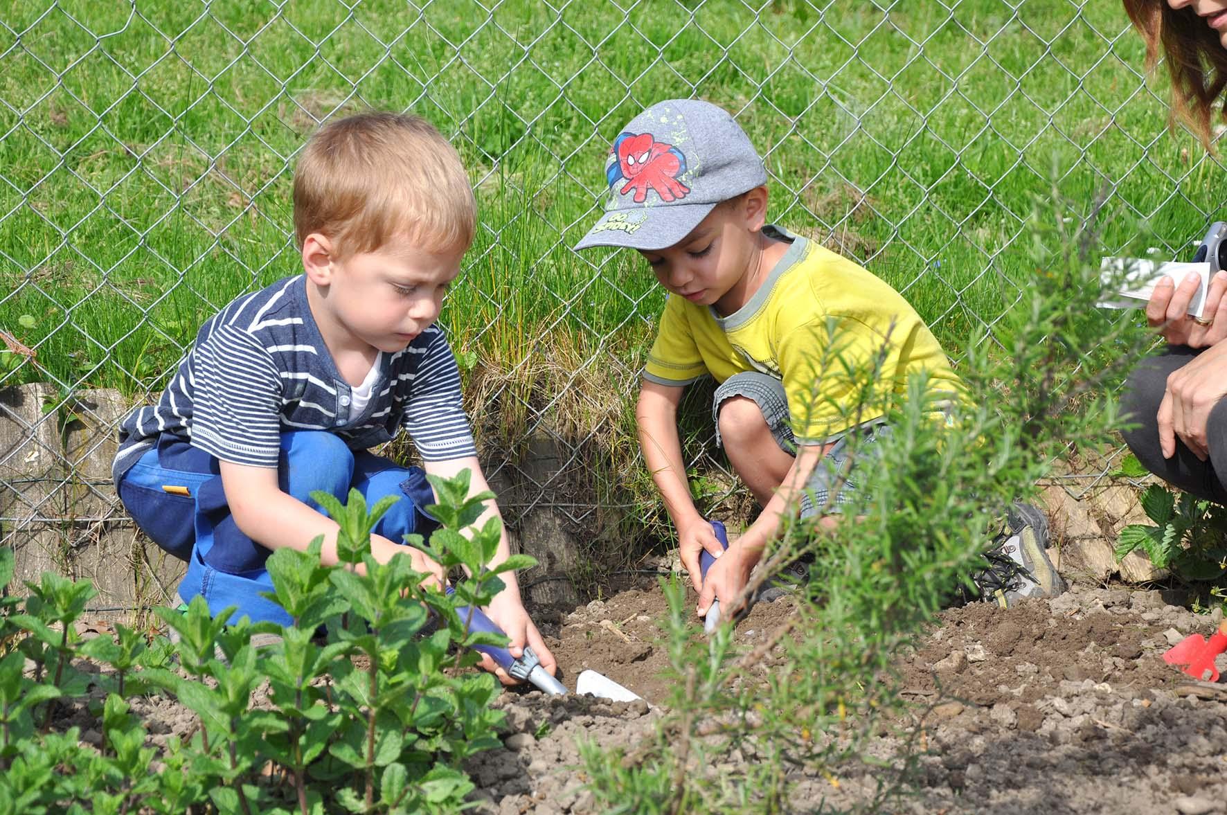 Niederwil die beste vorbereitung aufs leben reussbote for Garten idee abo